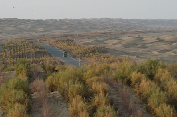 Highway in northwest China's dessert drives economy, lifts environment