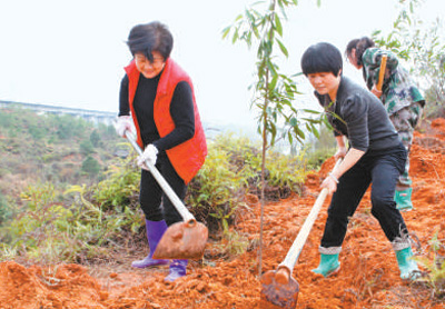 A Female Village cadre in SE China leads people to wealth by forestation